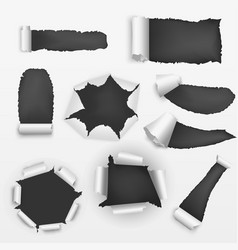 realistic detailed torn holes paper on a vector image