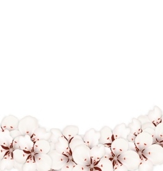Abstract Border Made in Sakura Flowers Blossom vector