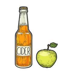 Cider bottle and apple sketch engraving vector