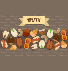 Flat nuts elements collection vector