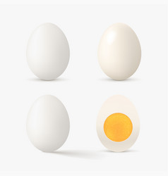 Realistic white color egg set on white vector