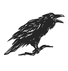 Screaming black crows vector