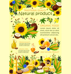 Sunflower olive and nut oils vector