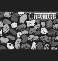 texture of black and white stone coquina wall in vector image