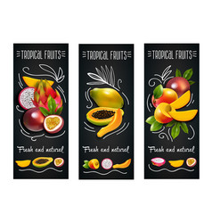 tropical fruits chalkboard label set vector image vector image