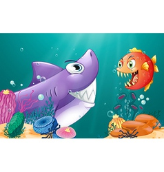 A shark and a piranha under the sea vector image