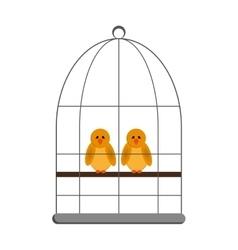 Birds in cage icon vector