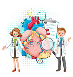 Doctor and human heart on white background vector