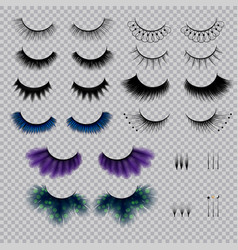 False eye lashes realistic set vector