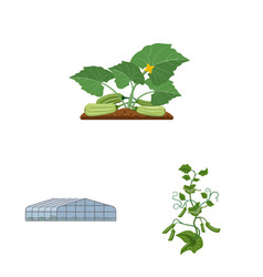 Greenhouse and plant logo vector