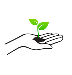 Open hand with soil and seedling vector