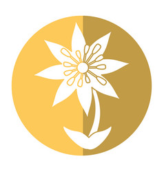 Plumeria flower decoration image shadow vector