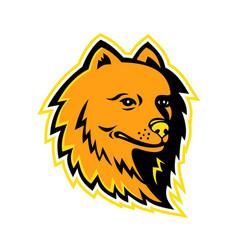 Pomeranian dog mascot vector