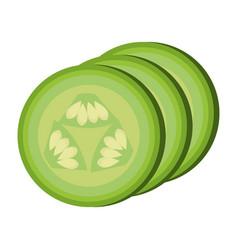 Sliced cucumber vegetable healthy food vector