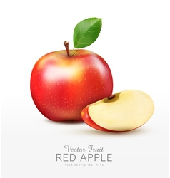 ruddy apple with apple slices isolated vector image