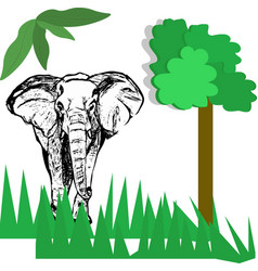 hand drawing of an elephant sketch and a vector image