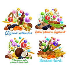Nut dried fruit cereal and bean vitamins vector