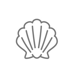 Shell seashell line icon vector