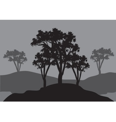 Silhouettes of three tress vector