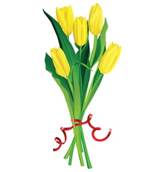 Yellow tulips bouquette over white background vector