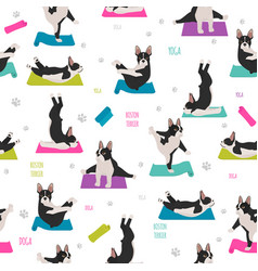 Yoga dogs poses and exercises french bulldog vector