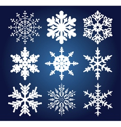 set of 9 snowflakes vector image vector image