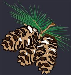 Three fir cones vector image