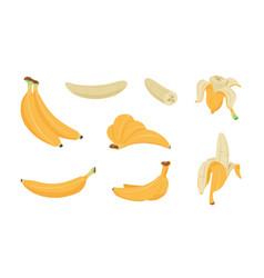 bananas set cartoon logo collection yellow vector image