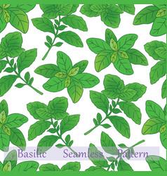 Basilic collection-06 vector