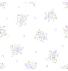 Colorful line grape on white background vector
