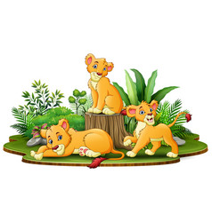 group of lion cartoon in the park with green plant vector image