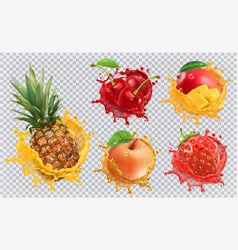 pineapple strawberry apple cherry mango juice vector image