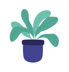 potted plant interior decoration gardening vector image