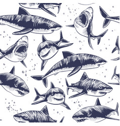 sharks seamless pattern hand drawn underwater sea vector image