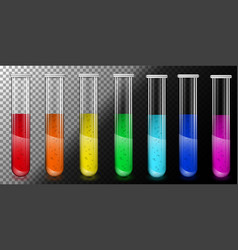 translucent glass tubes with colored liquid vector image