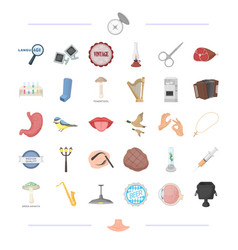 Body food tool and other web icon in cartoon vector