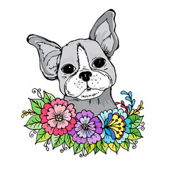 doodle a face of a cute bulldog in the colors vector image
