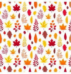 falling leaves isolated vector image