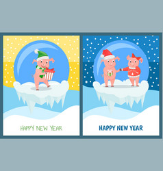 happy new year male and female piglets with gifts vector image