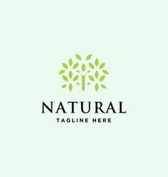 natural green logo vector image