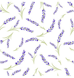 Seamless lavender flowers pattern on white vector