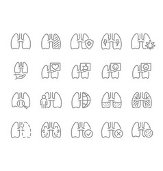 Set human lungs line icon healthy internal vector