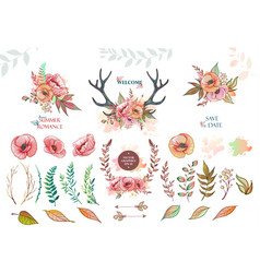 Set of elements from leaves and flowers vector