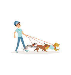 smiling boy walking with group of different breeds vector image