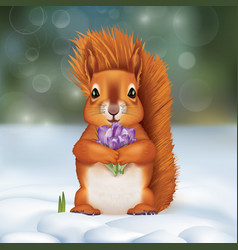 Squirrel in the snow with a bouquet of crocuses vector