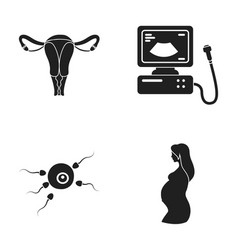 Uterus apparatus of ultrasound fertilization vector