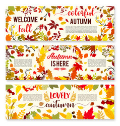 Welcome autumn banner set with fall leaf wreath vector