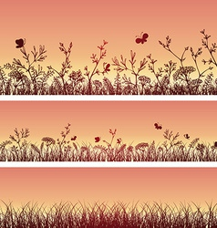 Wild herbs and flowers silhouettes vector