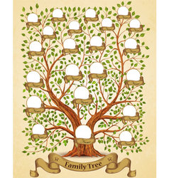 Family Tree template vintage vector image