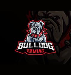 bulldog mascot sport logo design vector image